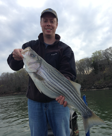 Nathan Brooks, videographer for the Kentucky Afield television show, holds a 37-inch striped bass he caught from Lake Cumberland last week. April winds bring good fishing for striped bass, crappie and white bass (KDFWR Photo)