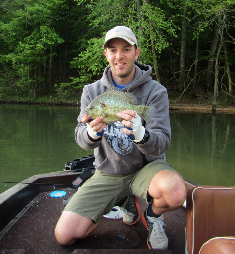 Kentucky afield outdoors late spring means it 39 s time to for Kentucky lake fishing