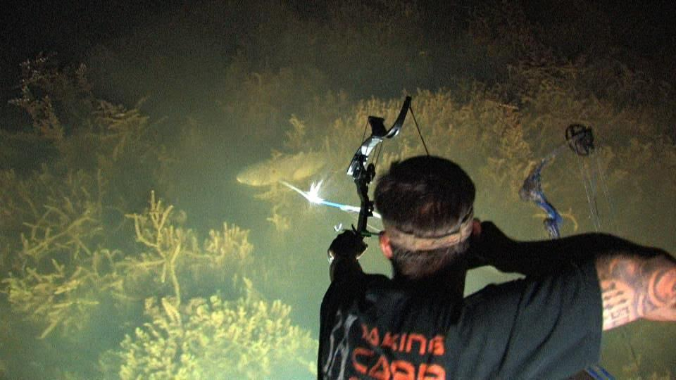 Art Lander's Outdoors: Bow fishing an excellent, fun way ...