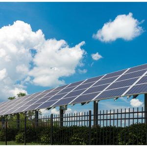 Solar panels at the L'Oréal facility in North Little Rock, Arkansas (click to enlarge)