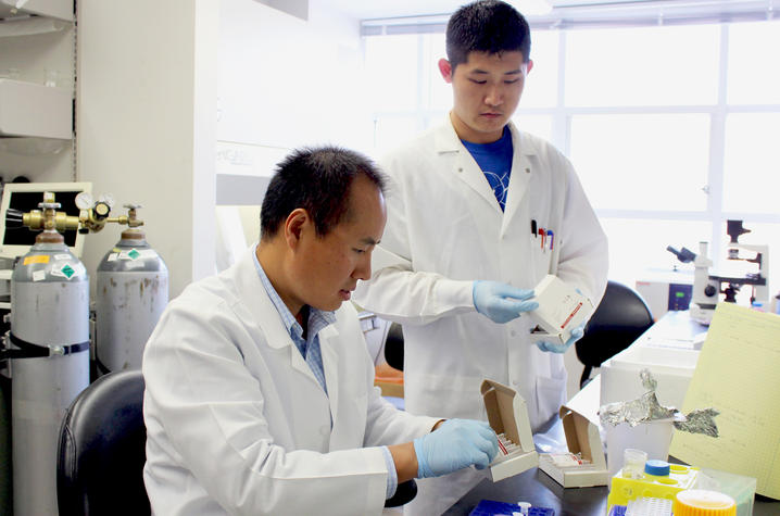 ChangCheng Zhou's laboratory investigates the environmental exposures that lead to arthrosclerosis, a major cause of cardiovascular disease (UK Now Photo)