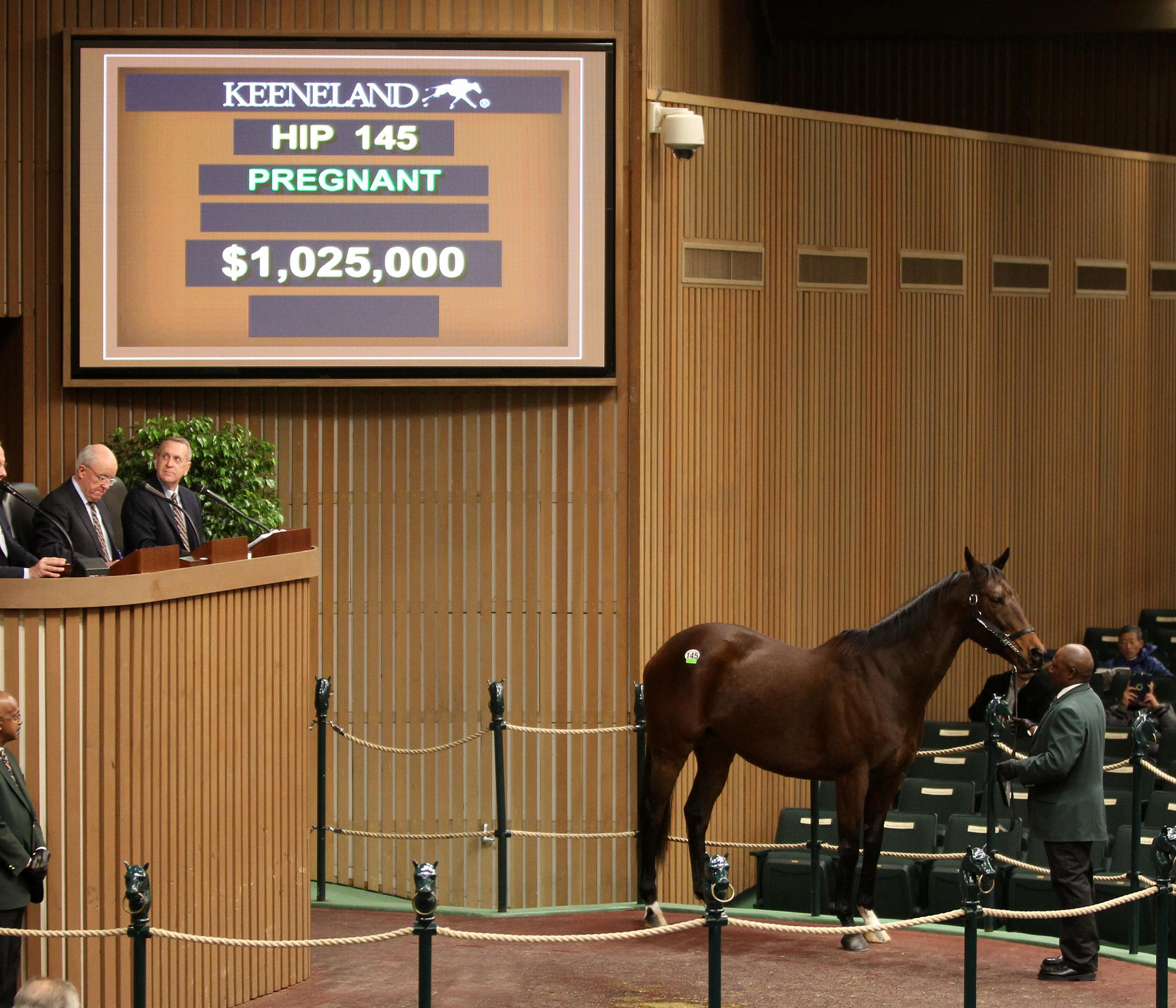 Daughter Of Unbridled S Song Brings Top Price Of 1 025